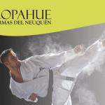 La asociación neuquina de karate ofrecerá un seminario al pie del volcán Copahue